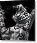 White Tiger Featured In Greece Exhibition Metal Print