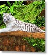 White Tiger Metal Print by MotHaiBaPhoto Prints