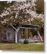 White Tree And Old Barn Metal Print