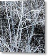 White Tree Black Night Metal Print
