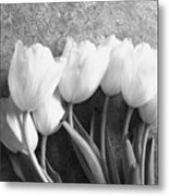 White Tulips Against Wallpaper Metal Print