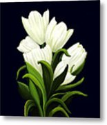 White Tulips Metal Print