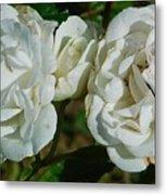 White Twin Flowers Metal Print