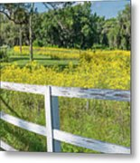 White Wood Fence And Wildflowers Metal Print