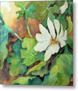 White Woodland Flower Metal Print