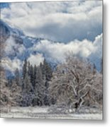White Yosemite Metal Print