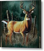 Whitetail Deer Metal Print by JQ Licensing