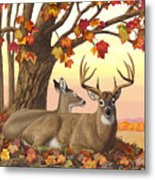 Whitetail Deer - Hilltop Retreat Horizontal Metal Print by Crista Forest