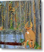 Whitetail Deer In Swamp Metal Print