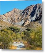 Whitewater Reserve Metal Print