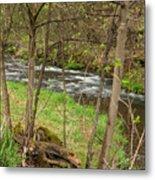 Whitewater River Spring 43 Metal Print