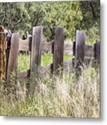 Who Ate The Fence Metal Print