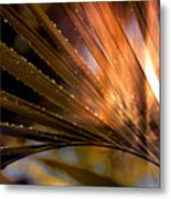 Who Stopped The Rain Metal Print