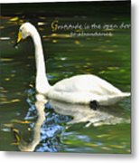 Whooper Swan Gratitude Metal Print