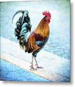 Why Did The Chicken... Metal Print