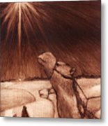 Why Would Wisemen Follow A Star? Metal Print by Linda Anderson