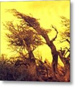 Wicked Trees Metal Print