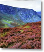 Wicklow Heather Carpet Metal Print