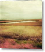 Wide Open Spaces Metal Print