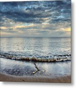 Wide Open  Metal Print