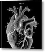 Widow Maker Heart 2 Metal Print