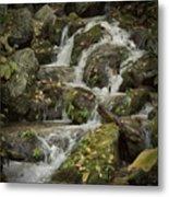 Wigwam Falls Blue Ridge Parkway Metal Print