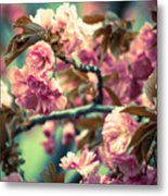 Wild Blossoms Metal Print