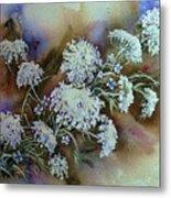 Wild Carrot -queen Anne's Lace Vignette   Metal Print