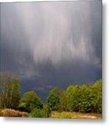 Wild Clouds Metal Print
