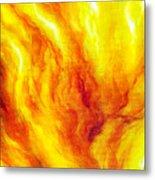 Wild Fire 03 Metal Print