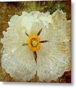 Ivory White Wildflower  Metal Print