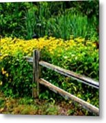 Wild Flowers And Fence Metal Print