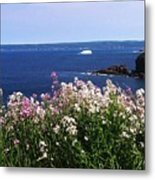 Wild Flowers And Iceberg Metal Print