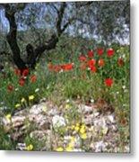 Wild Flowers And Olive Tree Metal Print