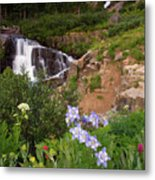 Wild Flowers And Waterfalls Metal Print