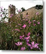 Wild Flowers At The Old Fortress Metal Print