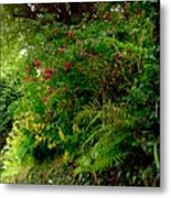 Wild Flowers On The Cliff Path Metal Print
