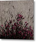 Wild Flowers On The Wall Metal Print