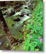 Wild Geraniums On Bradley Fork Metal Print