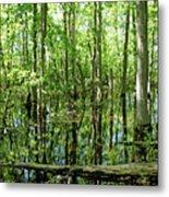 Wild Goose Woods Pond Vii Metal Print