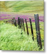 Wild Grain A Fence And Owls Clover Metal Print