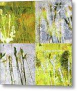 Wild Grass Collage 2 Metal Print