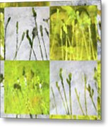 Wild Grass Collage 3 Metal Print