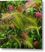 Wild Grasses And Red Clover Metal Print