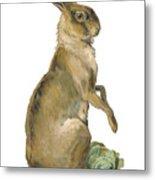 Wild Hare Metal Print