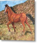 Wild Horse In Virginia City, Nevada Metal Print