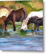 Wild Horses At The Watering Hole Metal Print