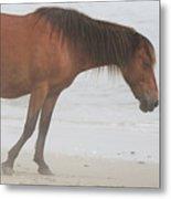 Wild Horses On The Beach 2 Metal Print