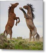 Wild Horse Challenge Metal Print