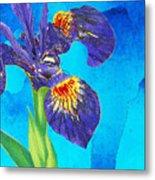 Wild Iris Art By Sharon Cummings Metal Print